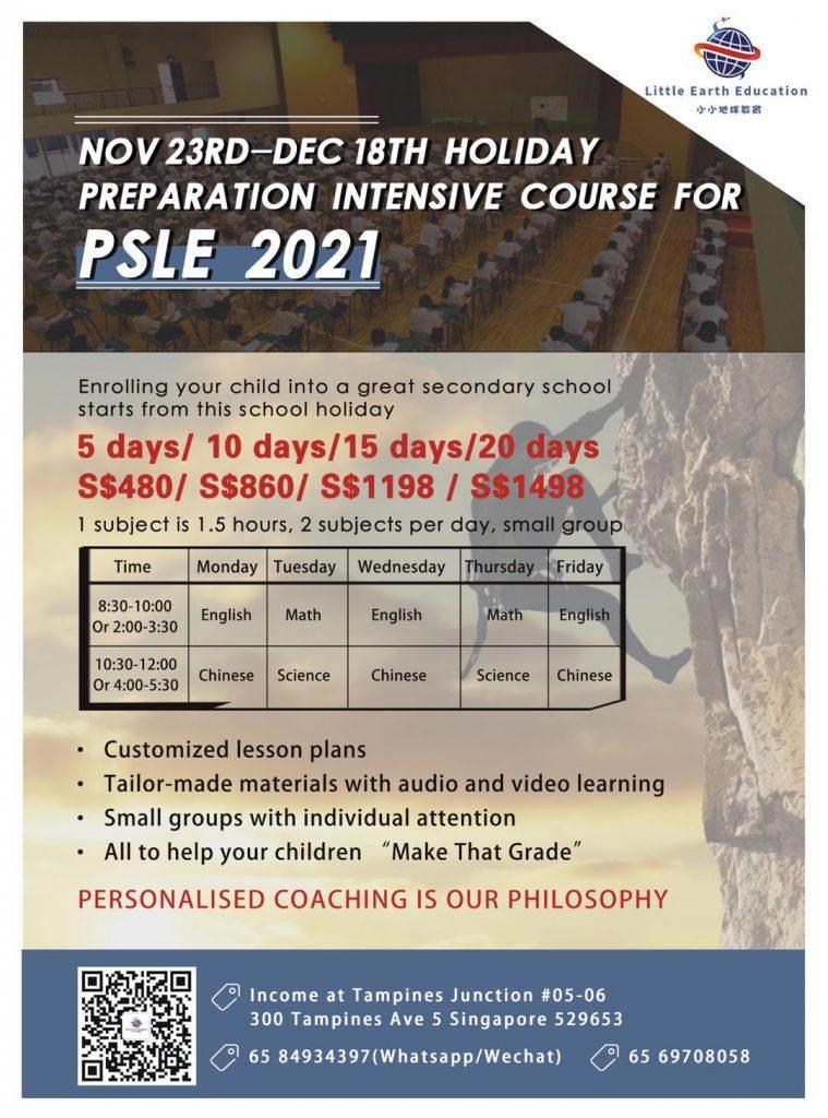 PSLE course